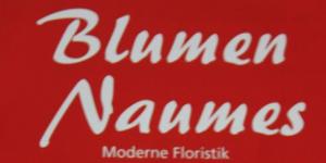 Logo_Blumen_Naumes